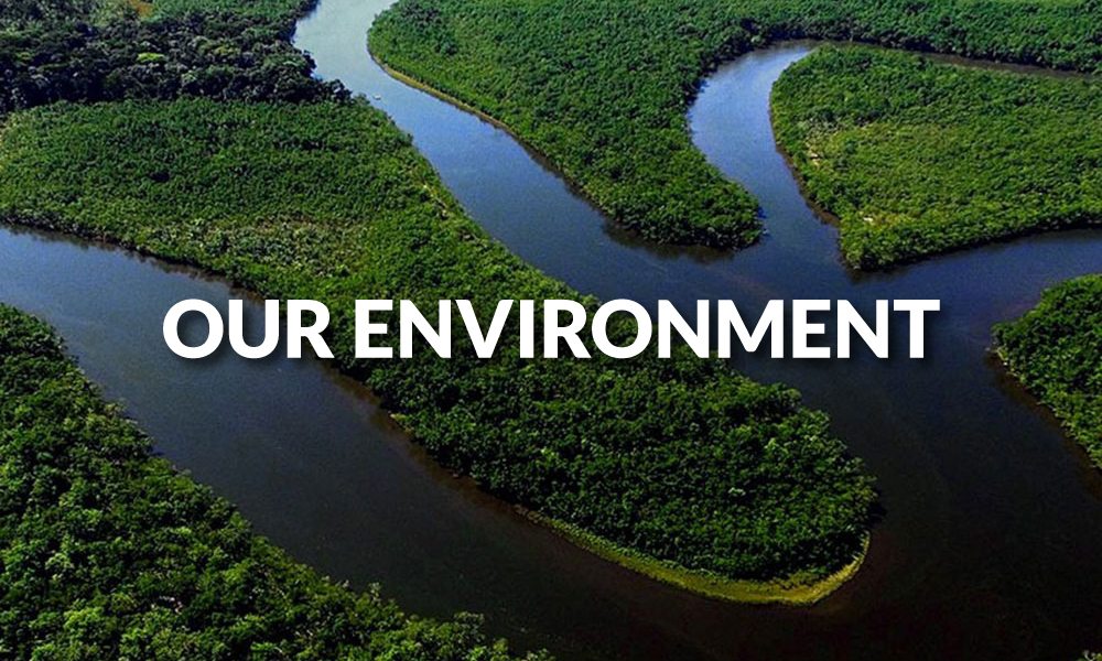 Sustainability-Our-Environment